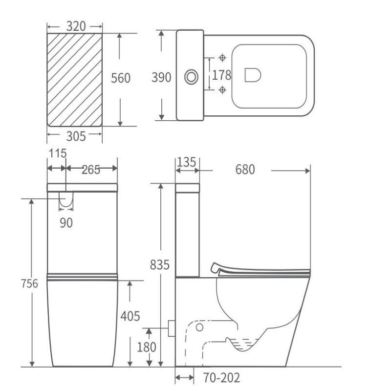 IIon Rimless Toilet Suite